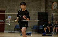 Irish National Badminton Championship Success