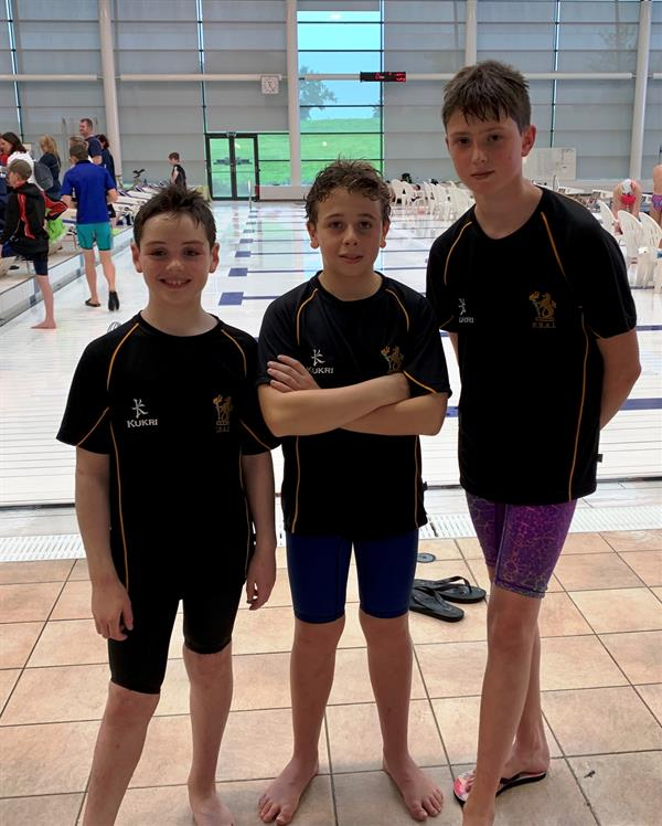 Swimming: Ulster School's Cup